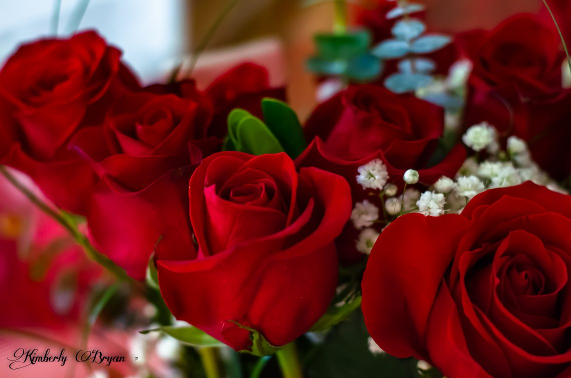 Beautiful red roses getting ready to be made into a brides bouquet.