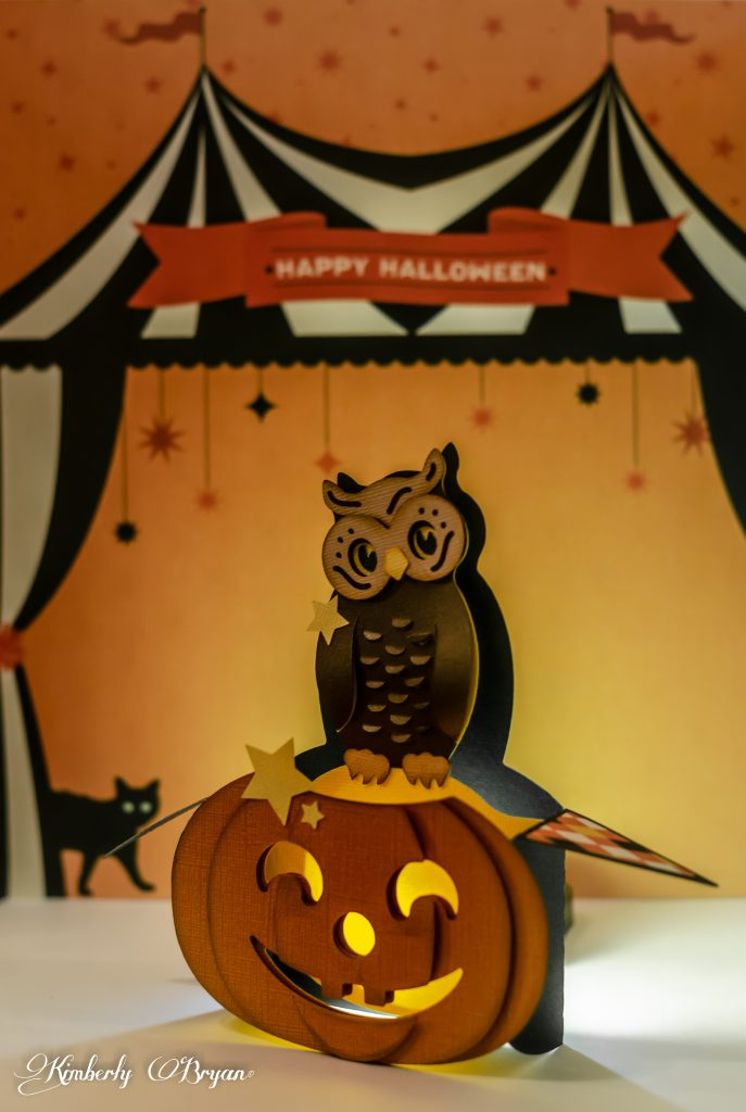 Side view of the cute 3d owl box card.