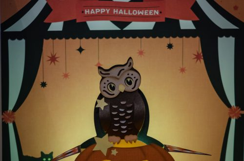 3d Owl sitting on a pumpkin box card.