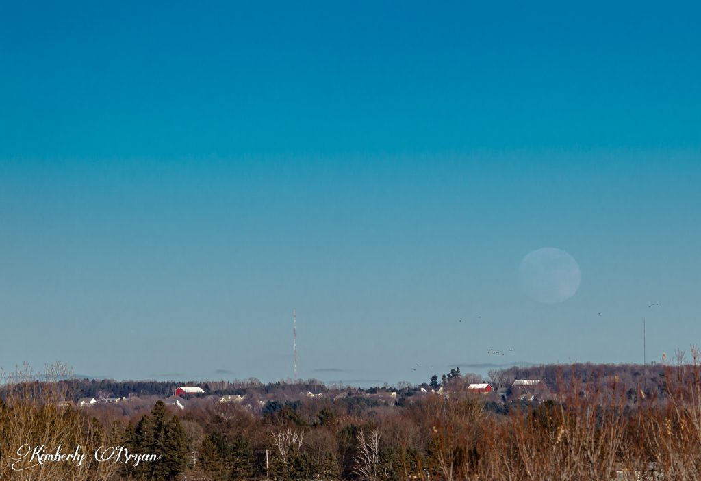 The skies were clear here today. So I had to got photograph the moons rising today to compare it for tomorrows Super Full Moon.