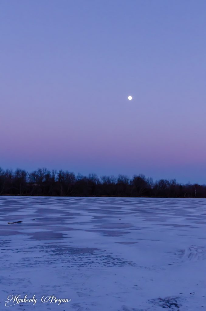A beautiful view of the almost Full Wolf Moon about the frozen lake. Everything is colored in blue and pink in the sky and on the ice.