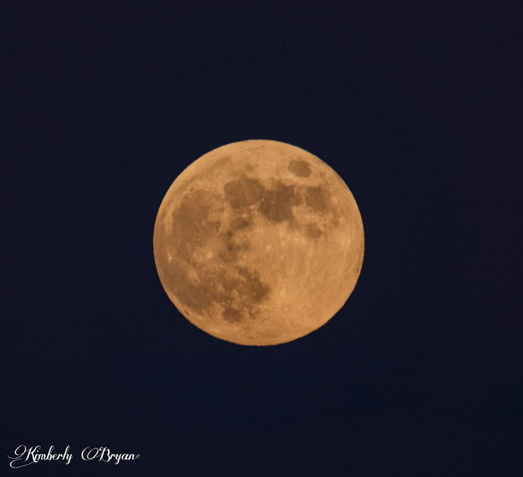 You are looking at a close up of the June 16th full moon. Bright and orange pink.