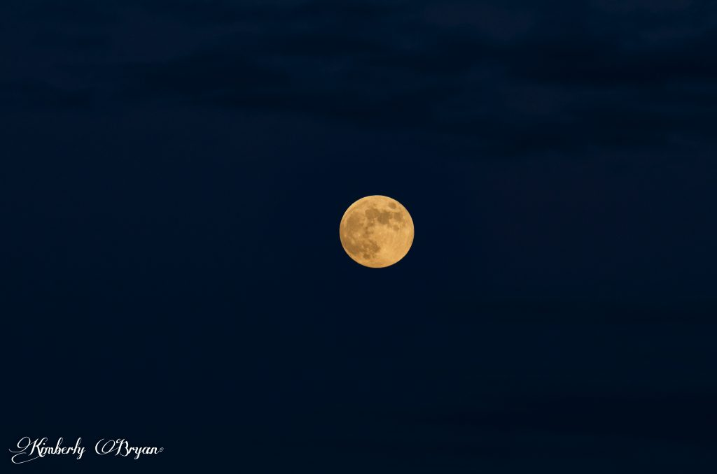 You are looking at the June 16th near full moon. It has risen up into the sky and it's now a bright orange pink ball.