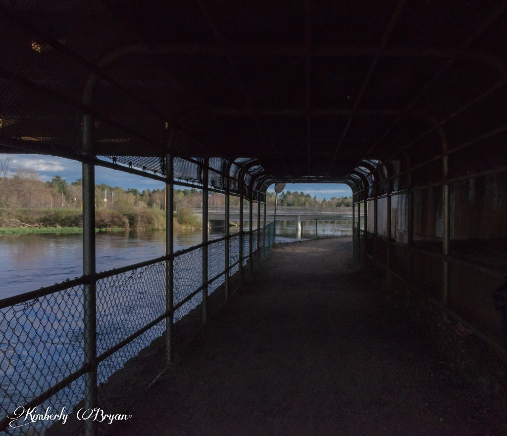 You are looking at a view from under neath a train track bridge. You walk under the bridge to get to the other side of McDill. The Plover River is flowing by the path.