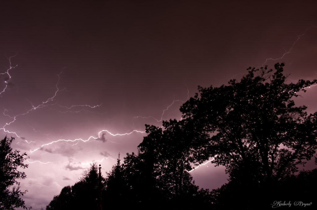 You are looking at a lightning bolt lighting up the sky coming through the tree tops.