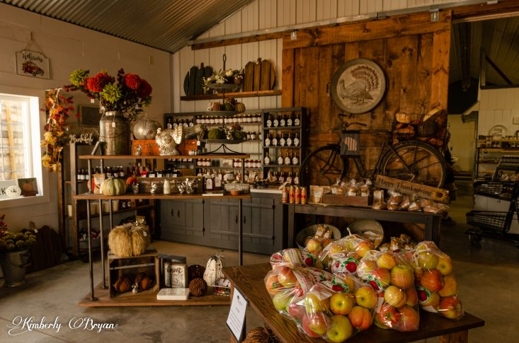You are looking at the inside of Helene's Apple Orchard store. It's decorated very rustic with old barn doors. Everything apple and pumpkin is for sale. Even bagged apples if you don't have the time to pick your own. This is from my post Apple Orchards in Full Swing.