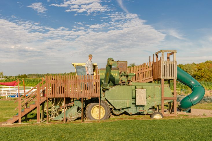 You are looking at a full size Combine Harvester made into a fort with a slide for kids. This is in the giant play area at Helene's Apple Orchard. This is a post from Apple Orchards in Full Bloom.