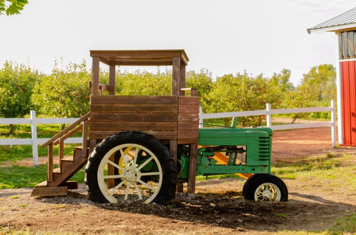 You are looking at a real old John Deer Tractor restored, with a wooden platform built onto it. So kids can climb up stairs to get into the tractor. This is in the giant play area at Helene's Apple Orchard. This is from my post Apple Orchards in Full Swing.