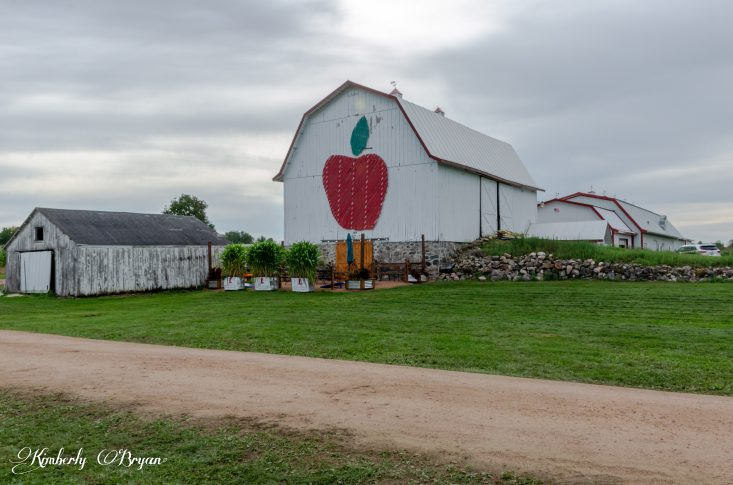 You are looking at the main barn, with a giant apple on it. This is at Helene's Apple Orchard. This is from my post Apple Orchards are in full swing.