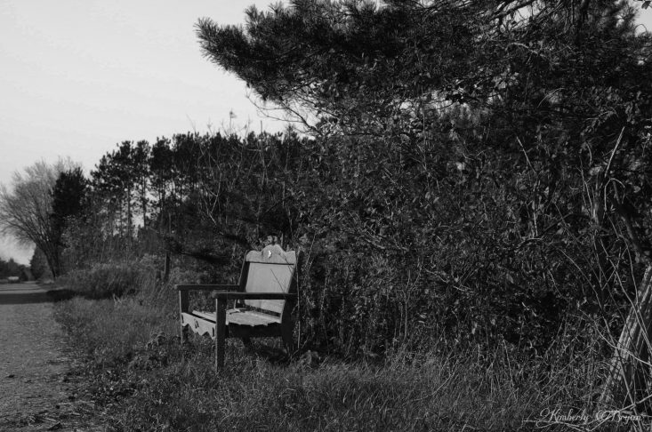 You are looking at and old bench one a country path in black and white. Be care as you sit, it's looks as if a ghost is waiting. This is from my post, Happy Spooktacular Halloween To You All.