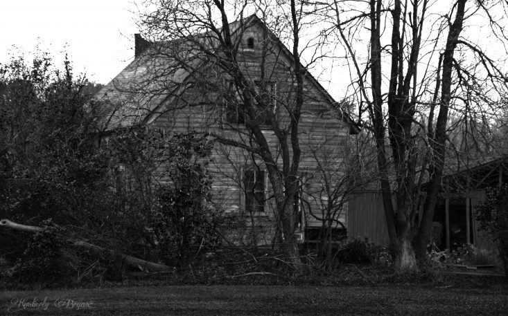 You are looking at an old abandoned farm house in black and white. It's over grown in trees, vines and weeds. Very spooky indeed. This if from my post, Happy Halloween.