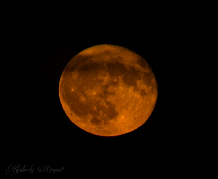 You are looking at the Hunter's Full Moon rising up from the horizon. He's bright orange with a thin line of clouds floating by him. This is from my post, October Hunter's Full Moon.