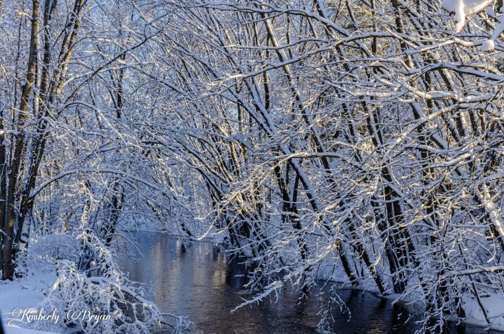 You are looking at a creek flowing by. With a canopy of snow covered trees over it. This is from my post, Happy New Year and Decade From Wisconsin.