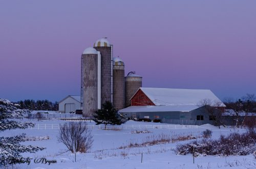 You are looking at one of Wisconsin's Iconic scenes, a traditional red barn. The sky was so purple, pink and blue in the background. We had a heavy snowfall the day before, and there's a beautiful blanket of snow.