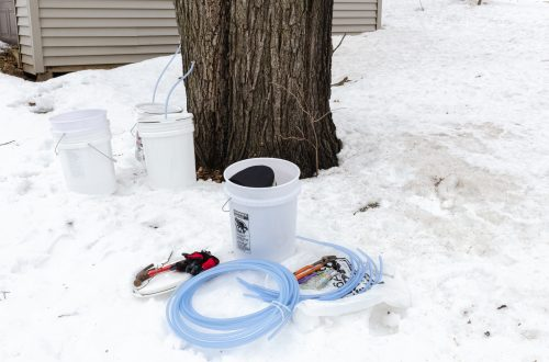You are looking at my maple tapping equipment I use for tapping my maple trees. There's 5 gal. buckets, a drill, sap spouts, tubing and hose. This is from my post, Maple Tapping on Leap Day.