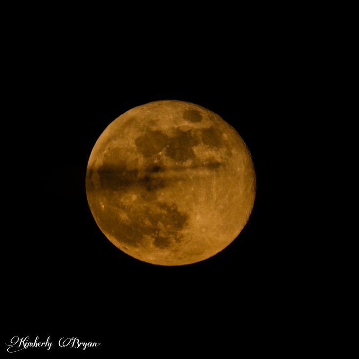 You are looking at the Last Super Moon of 2020. It has risen up above it's blanket of clouds with only a small patch running across the moon. It photographed very clearly so it's craters stand out nicely. it's very big and orange. As it rises it begins to loose it's deep orange color as the sun goes down.