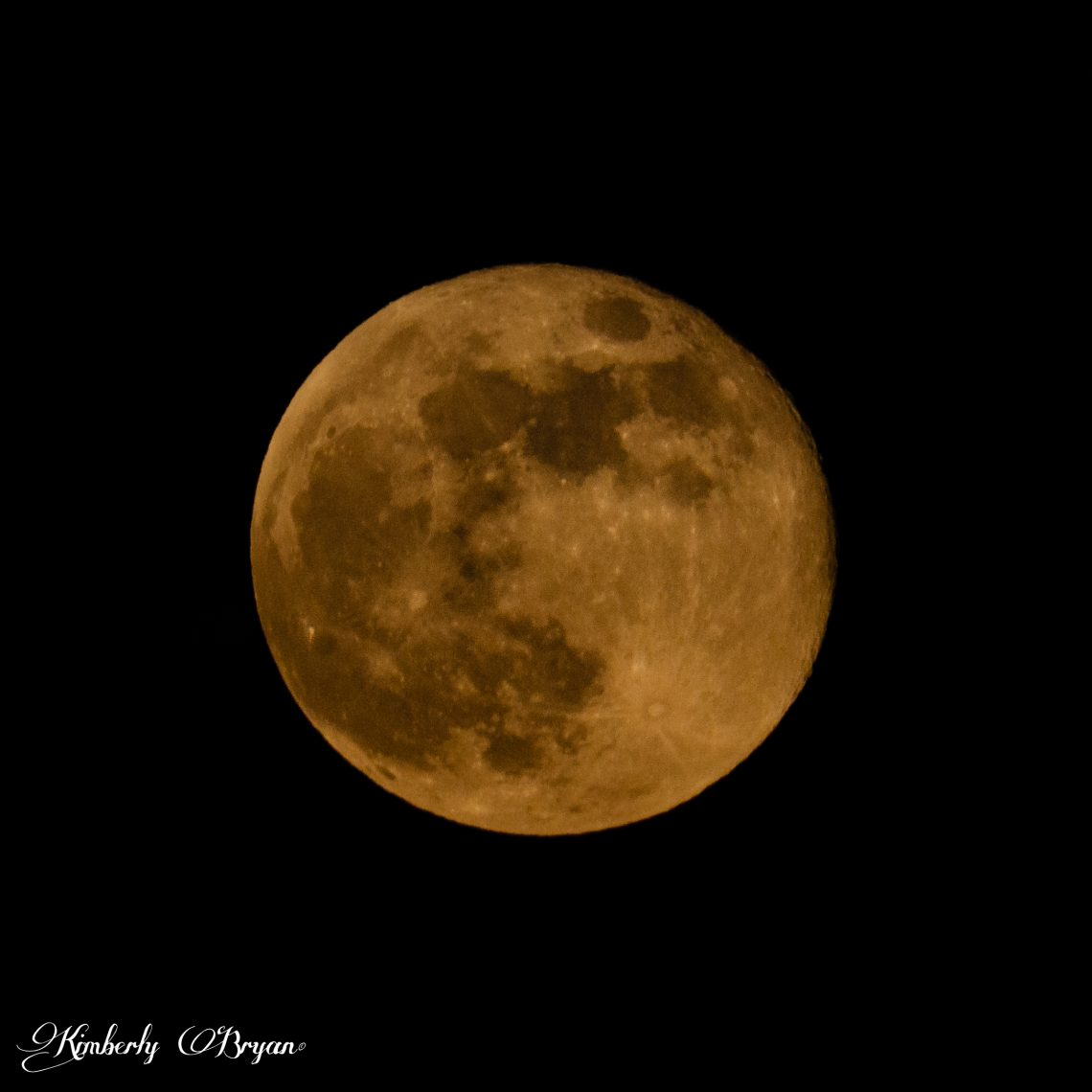 You are looking at the Super Full May Flower moon. This super moon is supposedly the last super of the year. While many will disagree, we shall find out as the year goes. The May moon was big, orange and beautiful.