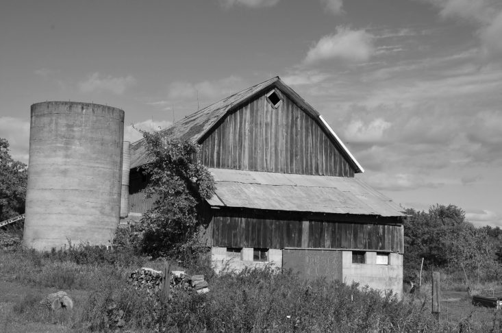 You are looking at a black and white photo of the backside of the Bryan Farm Barn in Wisconsin. This farm has been in my family for one hundred years.
