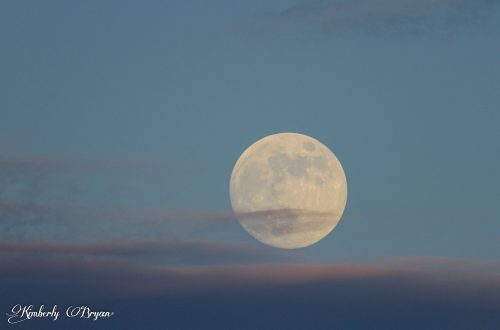 You are looking at the almost Full Strawberry Moon, that will also be a lunar eclipse on the other side of the world.