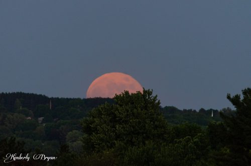 You are looking at the Strawberry Full Moon rising in all it's orange glory just above the horizon.