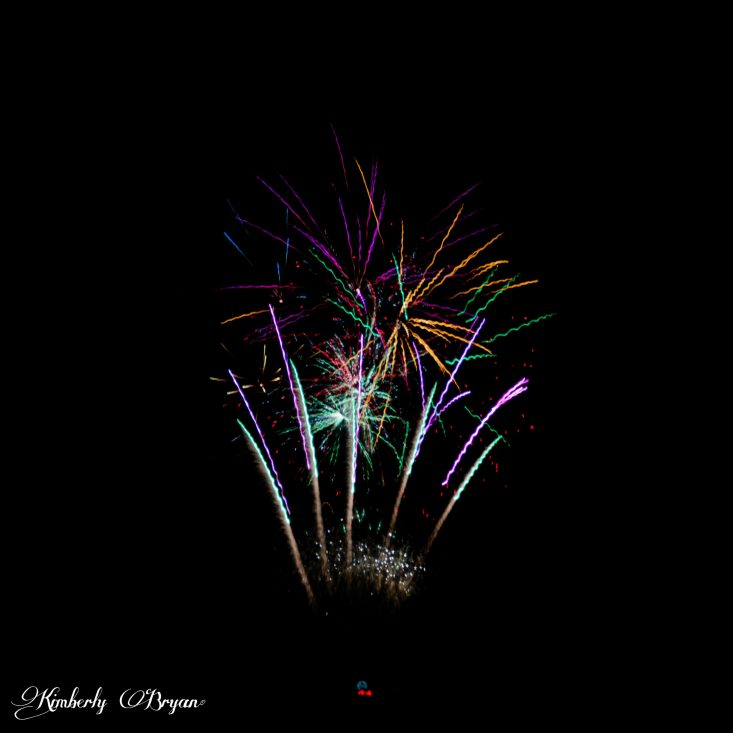 You are looking at a very colorful group of flower looking fireworks. The top sparklers look like daisy's in the colors of purple, magenta, green and blue. They look like they are on colored stems. Happy 4th of July under the Full Moon.