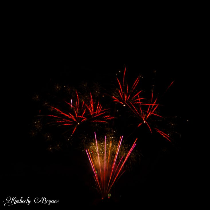 You are looking at a group of fireworks that look like a bunch of flowers with their stems. The colors are very vibrant in red, white and gold.