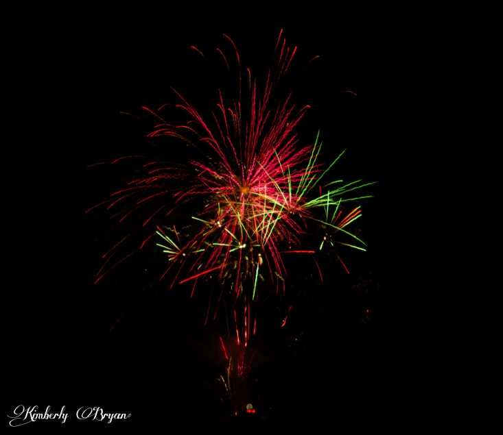 You are looking at a very large set of fireworks in the night sky for the 4th of July, under the full moon. The sparkles are colored in red, green, gold and some purple.