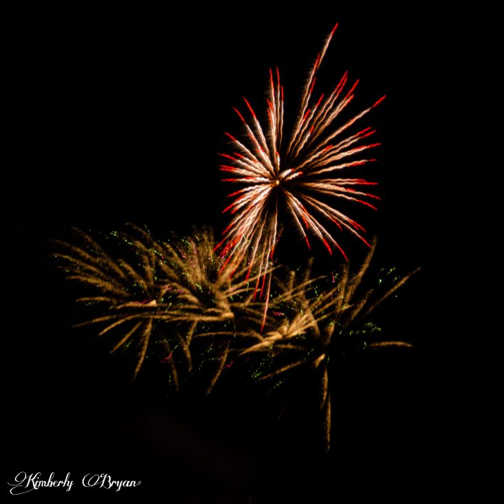 You are looking at a large display of fireworks up in the night sky. There is one red and white star burst and three golden starbursts below it. Happy 4th of July!