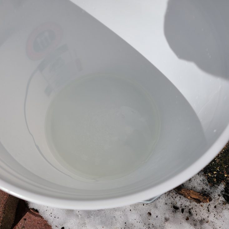 You are looking at maple sap in a five gallon collecting bucket. That's my que telling me the trees are running. So I can begin to tap my other trees and begin the maple syrup season.